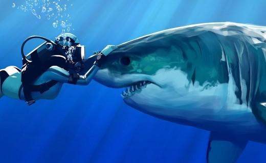Các cách xử lý khi vô tình đối mặt với cá mập